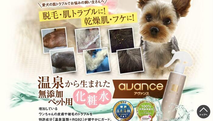 シャンプー後には犬専用化粧水での保湿ケアがおすすめ